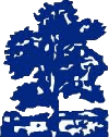 Moseley Ashfield Cricket Club -New Logo